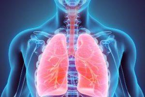 pulmonology-resized
